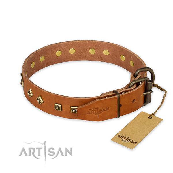 Everyday walking full grain genuine leather collar with studs for your dog