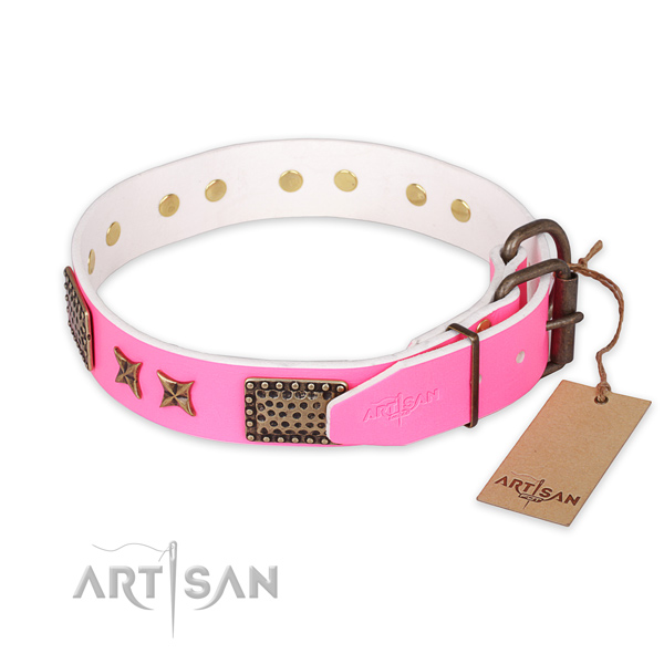Everyday use leather collar with studs for your pet