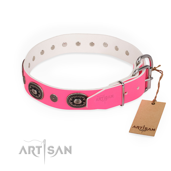 Remarkable design adornments on leather dog collar