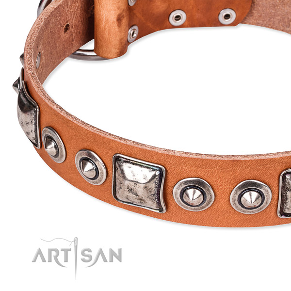 Quick to fasten leather dog collar with almost unbreakable chrome plated buckle