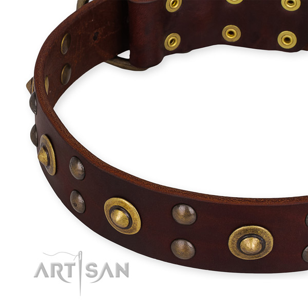 Easy to put on/off leather dog collar with resistant rust-proof buckle