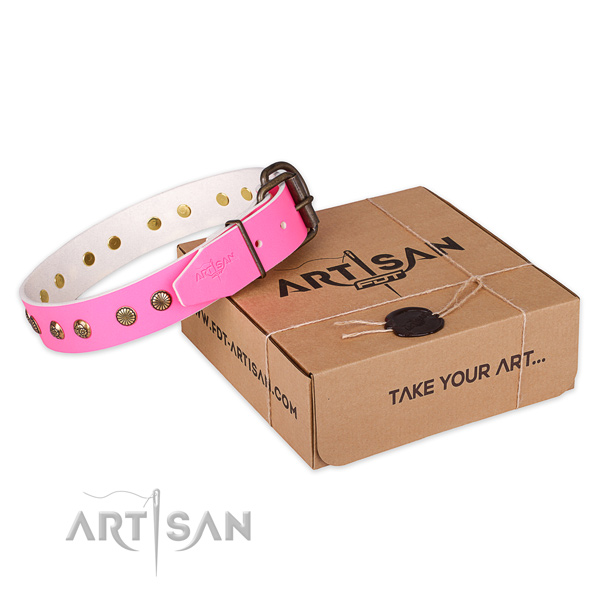 Fashionable genuine leather dog collar for daily use