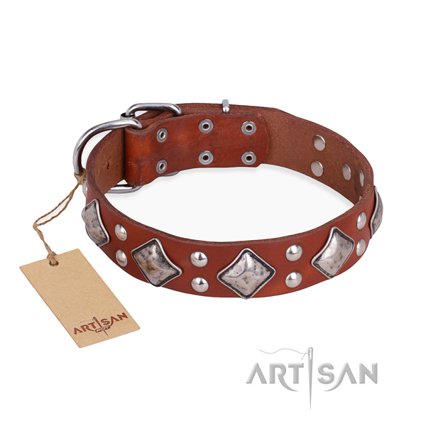 Incredible design studs on full grain genuine leather dog collar