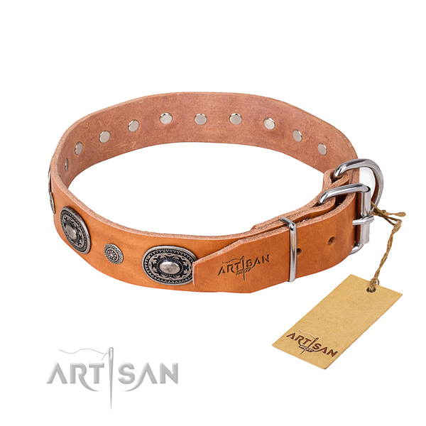 Functional leather collar for your beloved dog
