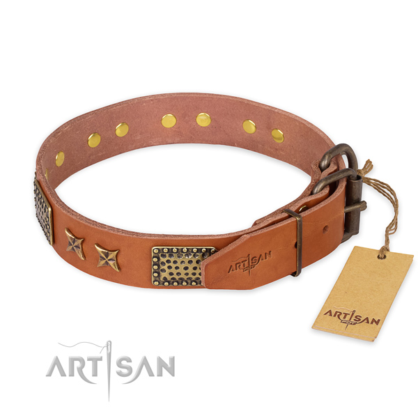 Everyday walking genuine leather collar with embellishments for your four-legged friend