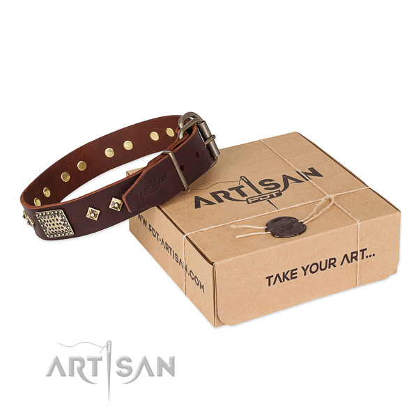 Trendy full grain genuine leather dog collar for stylish walking