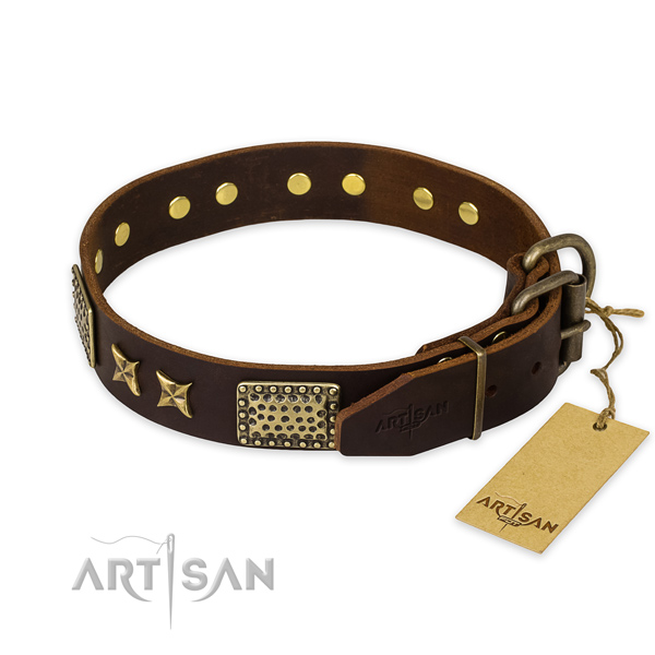 Daily use full grain natural leather collar with studs for your four-legged friend