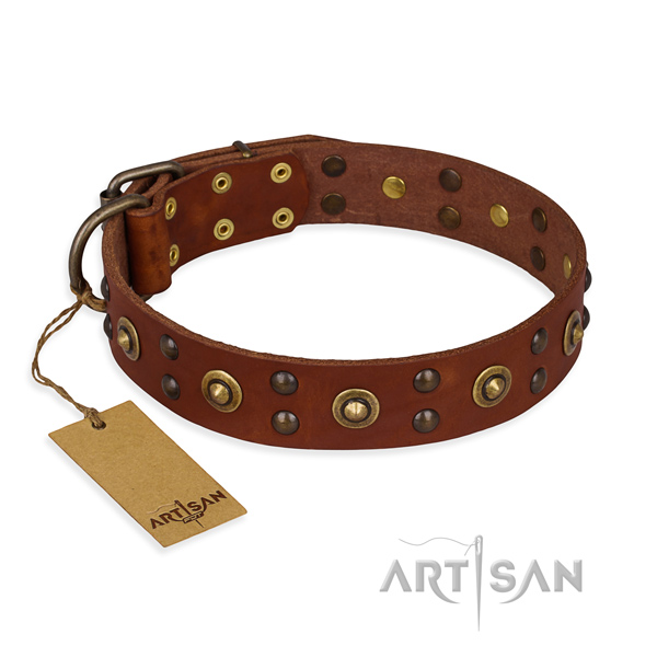 Extraordinary design decorations on full grain natural leather dog collar