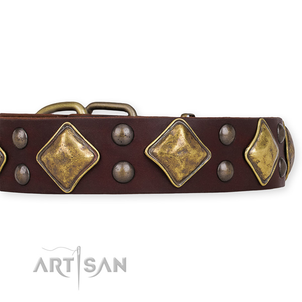 Snugly fitted leather dog collar with extra sturdy rust-proof buckle