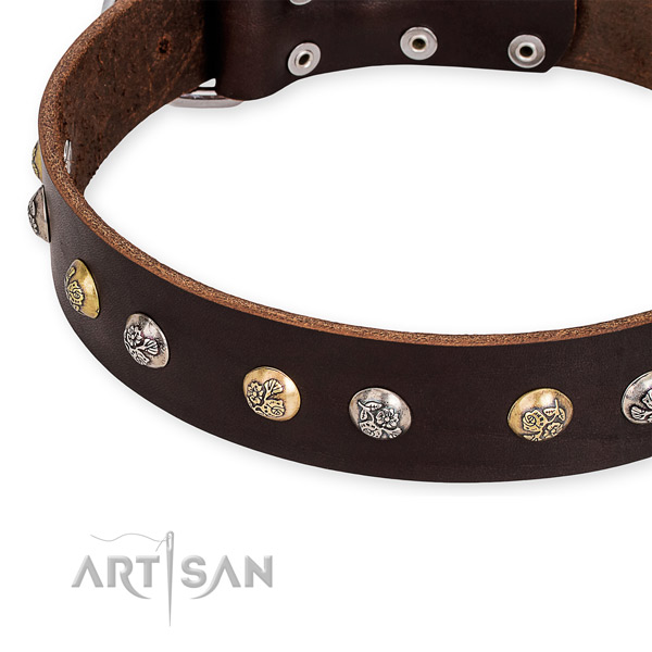 Easy to adjust leather dog collar with extra strong non-rusting buckle