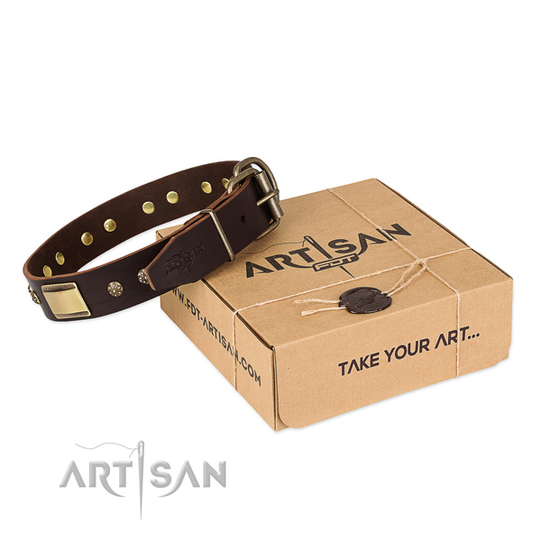 Finest quality genuine leather dog collar for daily use