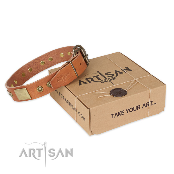 High quality full grain genuine leather dog collar for stylish walking