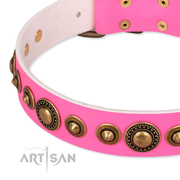 Easy to put on/off leather dog collar with extra sturdy non-rusting hardware