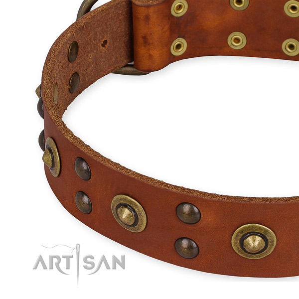Quick to fasten leather dog collar with resistant to tear and wear rust-proof buckle and D-ring