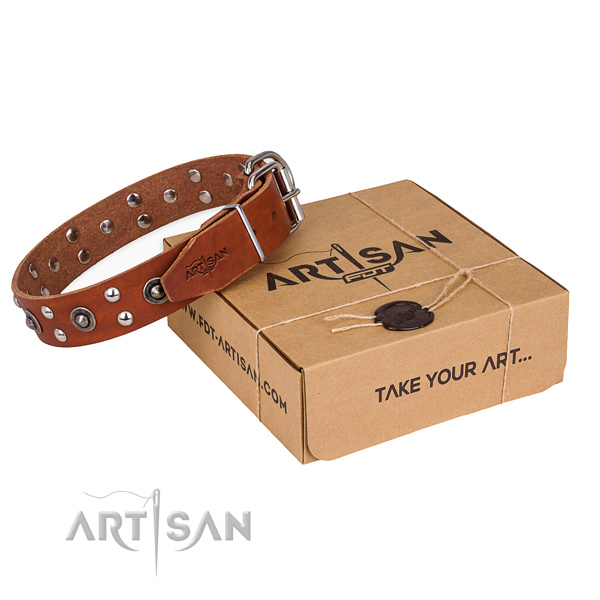 Top notch natural genuine leather dog collar for stylish walks