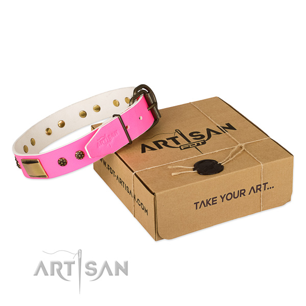 Awesome natural genuine leather dog collar for stylish walks