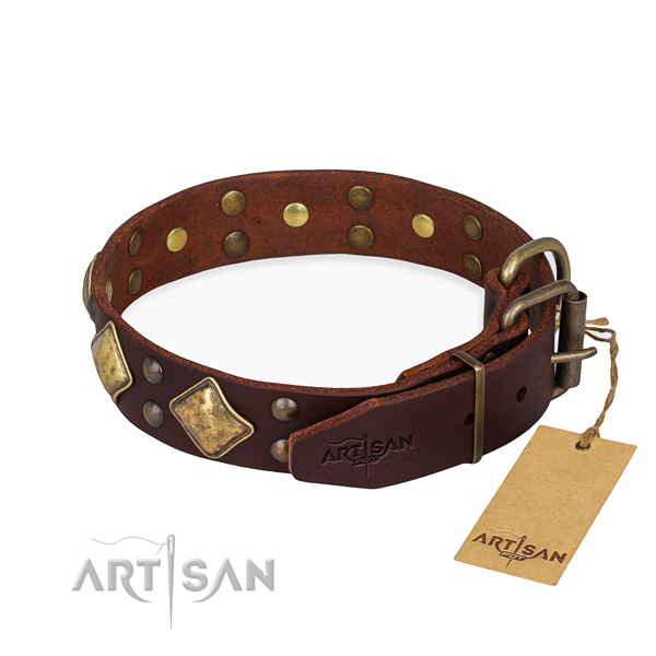 Functional leather collar for your elegant dog
