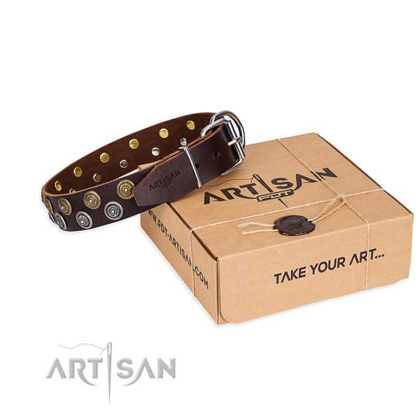 Casual style leather dog collar with exceptional decorations