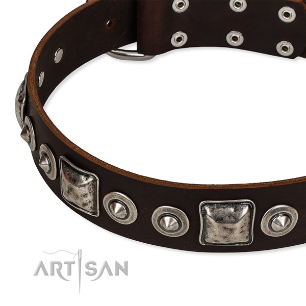 Adjustable leather dog collar with resistant to tear and wear durable fittings