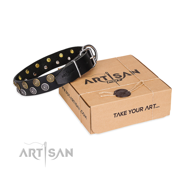 Casual style leather dog collar with elegant embellishments
