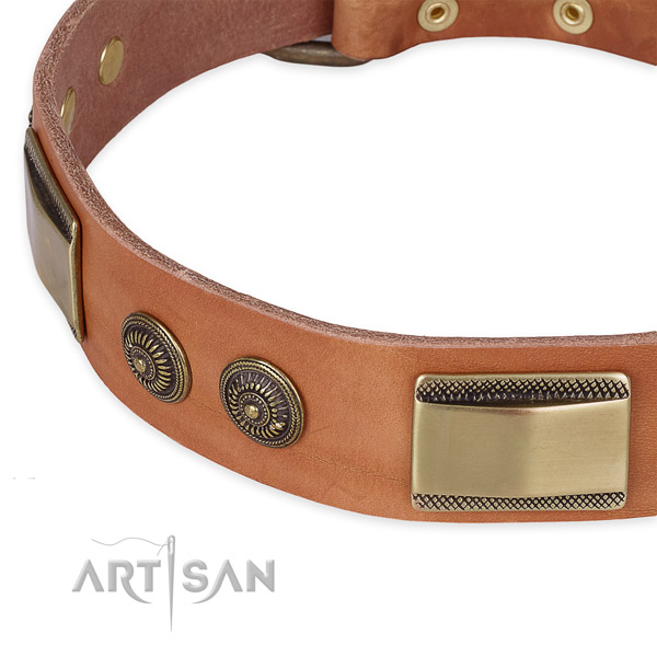 Everyday use leather collar with rust-proof buckle and D-ring