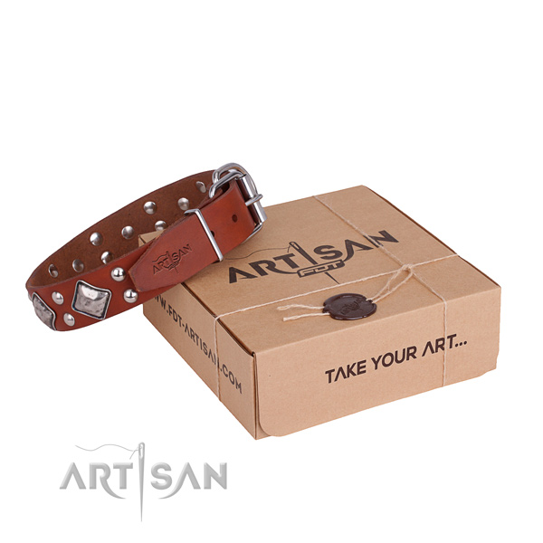 Perfect fit leather dog collar for stylish walks