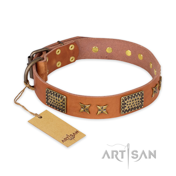 Remarkable design embellishments on full grain natural leather dog collar