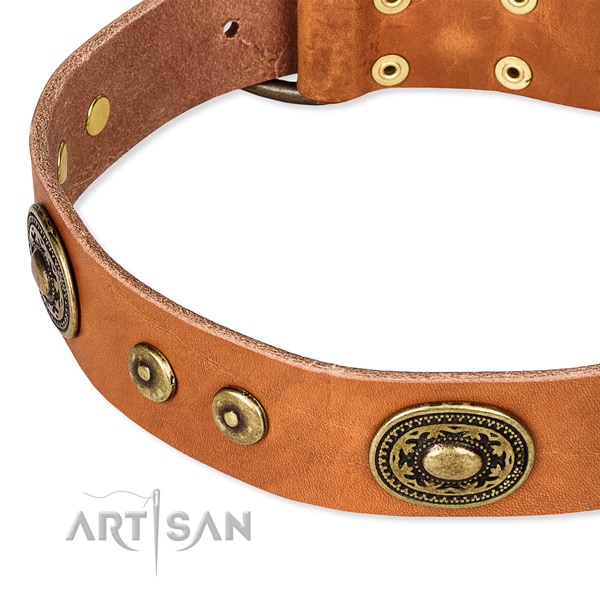 Easy to put on/off leather dog collar with almost unbreakable brass plated buckle