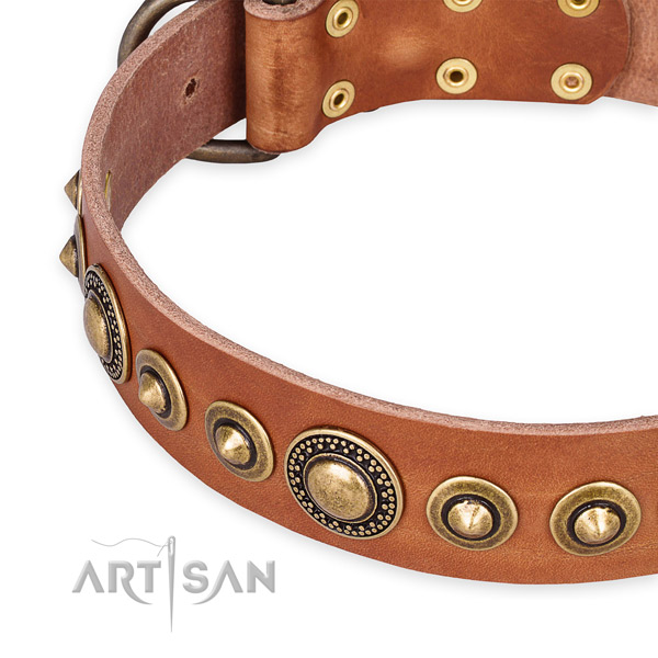 Snugly fitted leather dog collar with almost unbreakable old bronze-like plated fittings