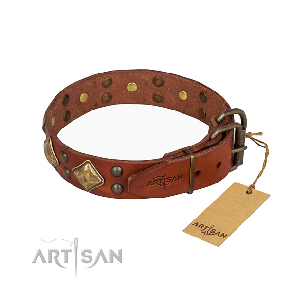 Everyday leather collar for your handsome four-legged friend