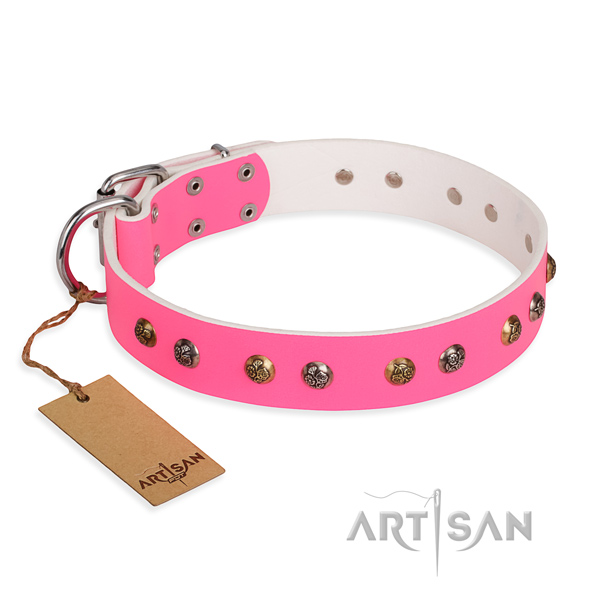 Unusual design adornments on full grain genuine leather dog collar