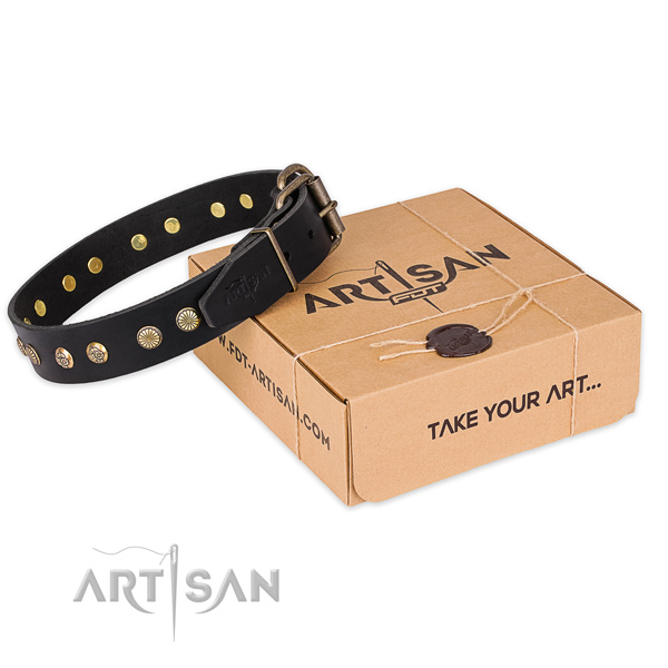 Finest quality full grain natural leather dog collar for walking in style