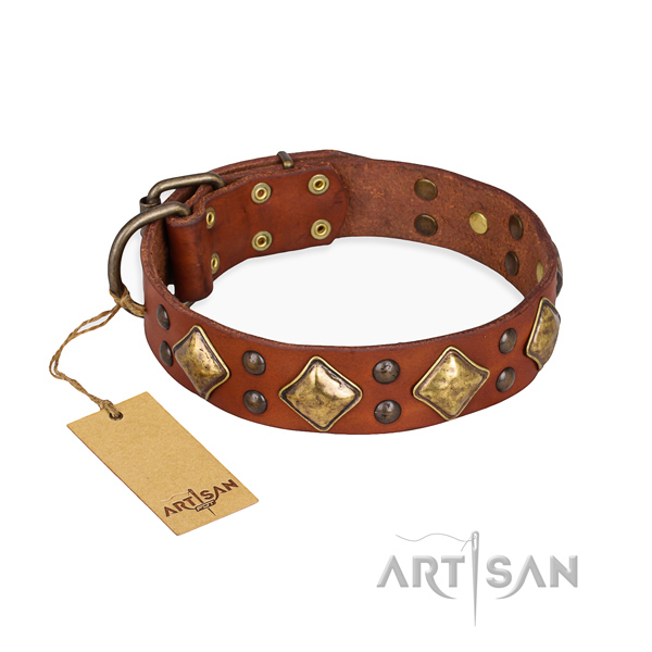 Exceptional design studs on full grain natural leather dog collar
