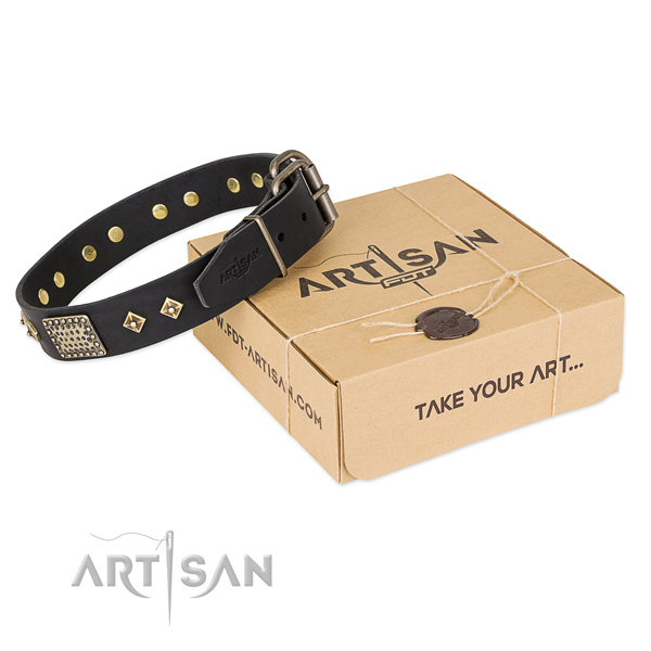 Stylish design leather dog collar for stylish walks