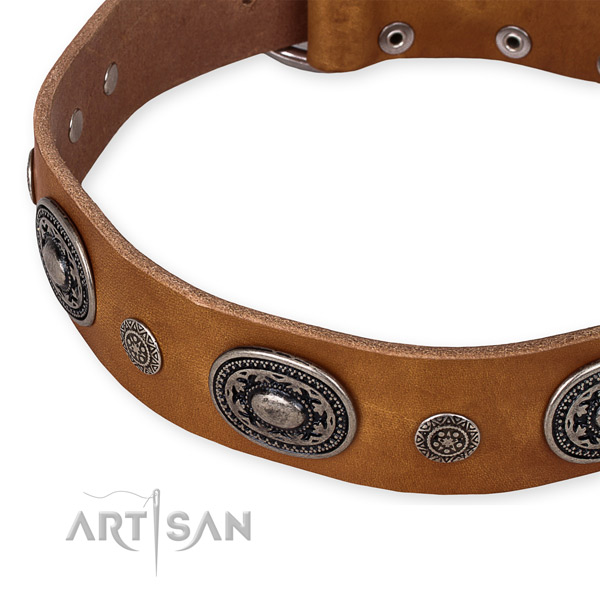 Snugly fitted leather dog collar with almost unbreakable non-rusting fittings