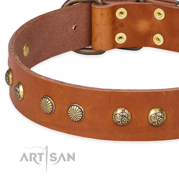 Quick to fasten leather dog collar with extra strong rust-proof hardware