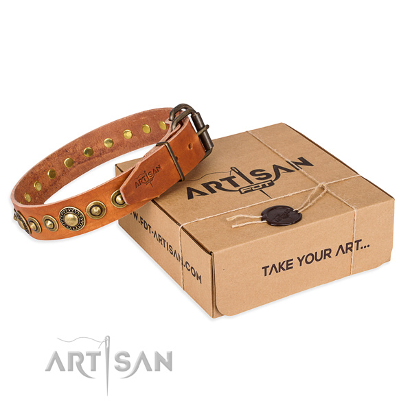 Fine quality full grain genuine leather dog collar for stylish walks