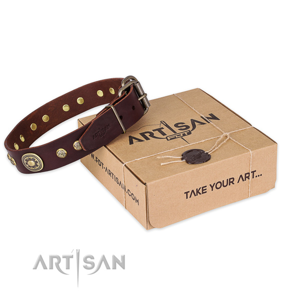 Top quality full grain leather dog collar for stylish walking