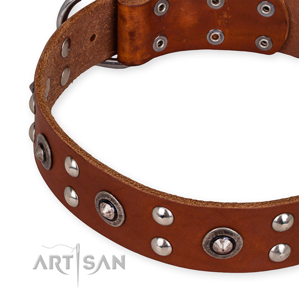 Snugly fitted leather dog collar with extra sturdy rust-proof hardware