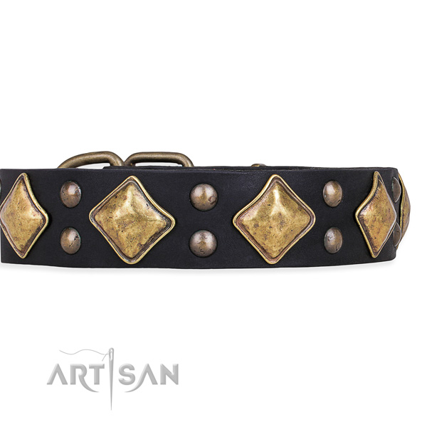 Easy to use leather dog collar with resistant to tear and wear brass plated set of hardware