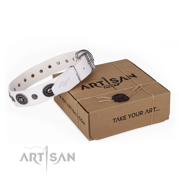 Fashionable full grain leather dog collar for stylish walks
