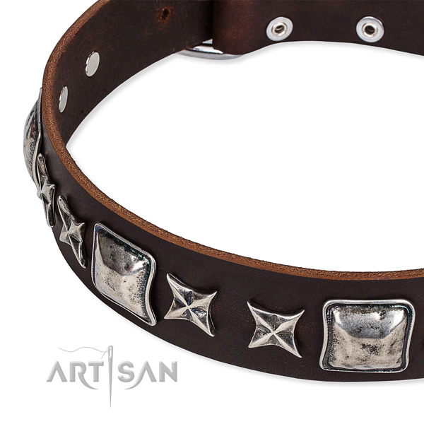 Easy to put on/off leather dog collar with extra strong non-rusting buckle