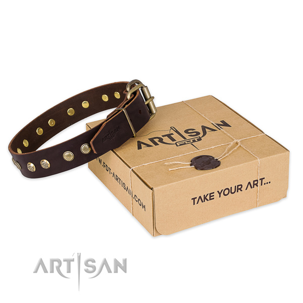 Designer natural genuine leather dog collar for stylish walking
