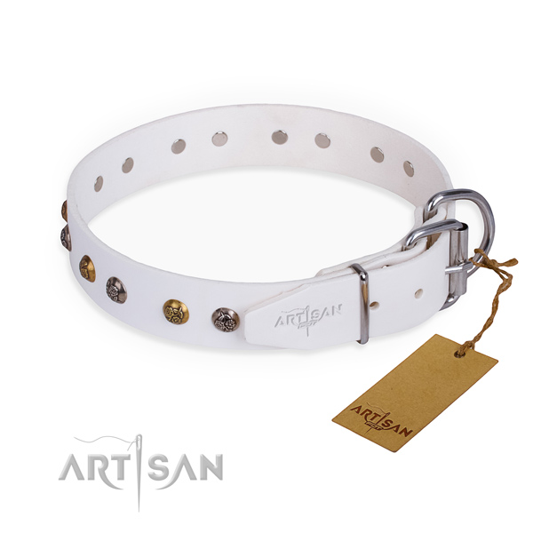 Wear-proof leather collar for your elegant four-legged friend