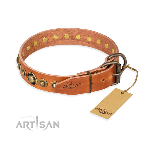 Tear-proof leather collar for your beloved pet