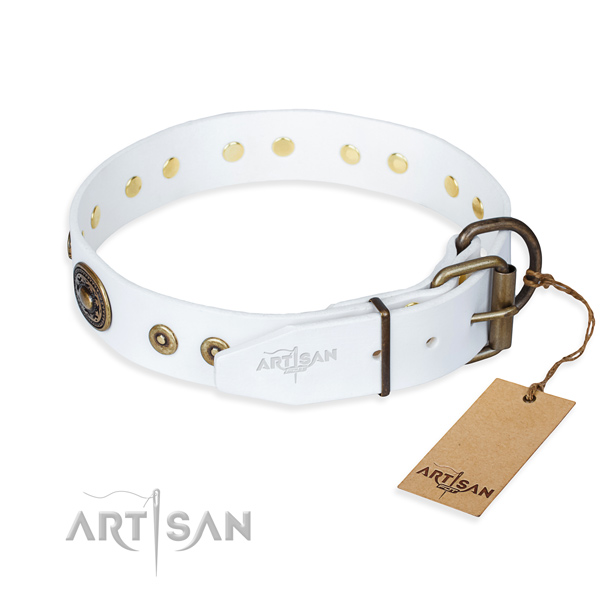 Versatile leather collar for your gorgeous dog