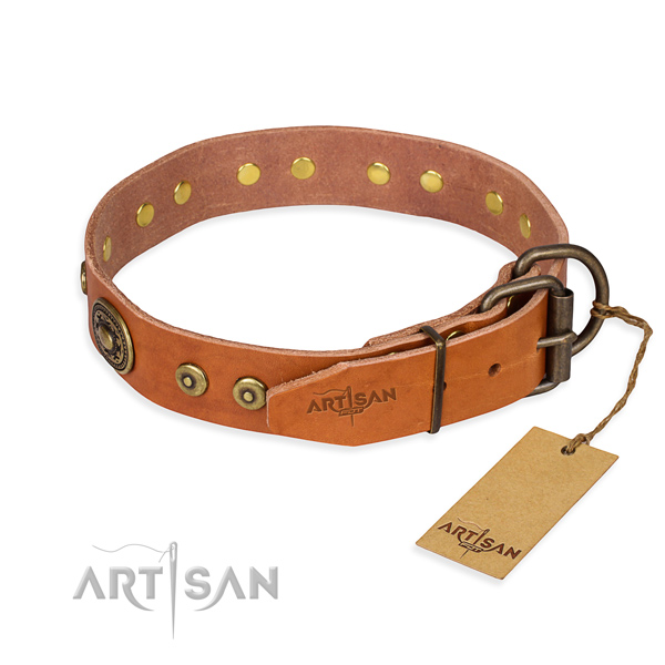 Daily leather collar for your favourite canine