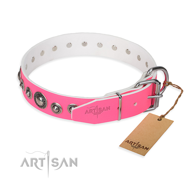 Versatile leather collar for your darling canine