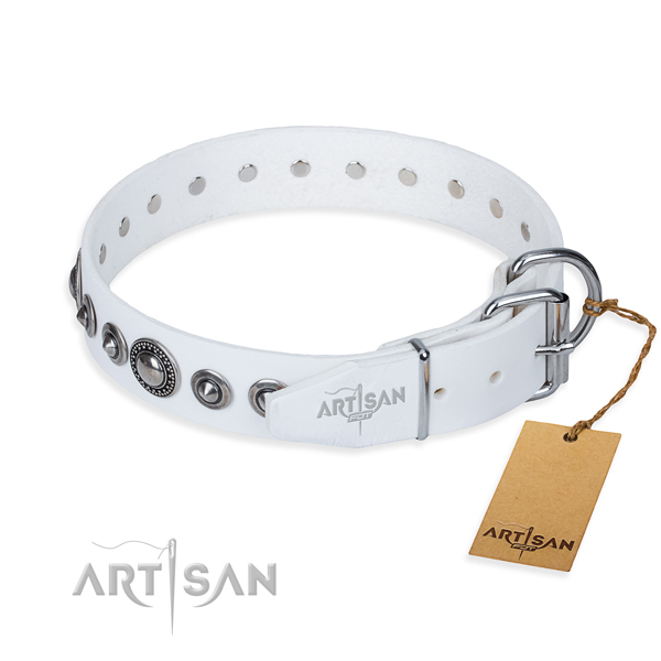 Multifunctional leather collar for your favourite pet