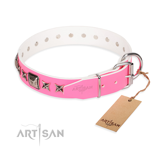 Everyday leather collar for your stunning dog